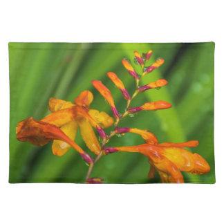 Wet orange flower placemat