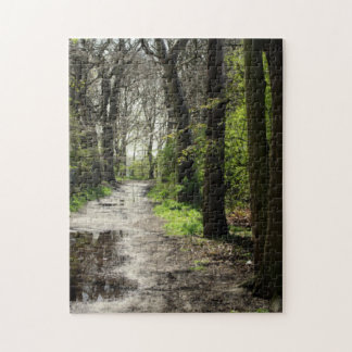 Wet Rain Puddle Path in Moss Covered Tree Forest Puzzles