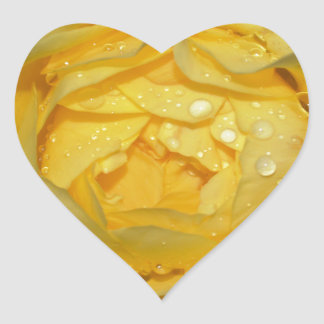 Wet Yellow Rose Heart Sticker