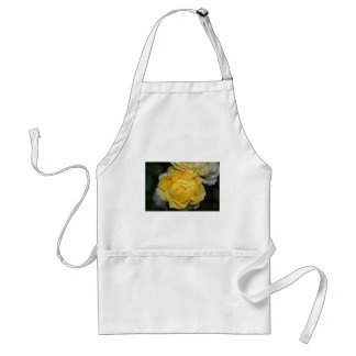 Wet Yellow Rose Standard Apron
