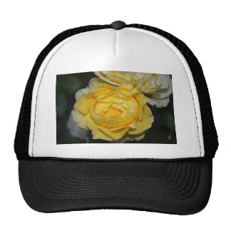 Wet Yellow Rose Trucker Hat