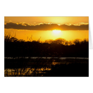 Wetland Gold Card