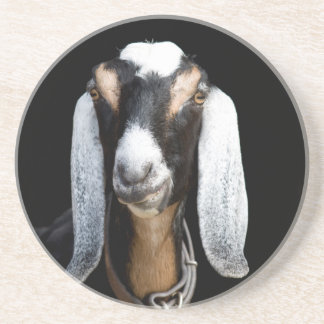 We've got Your Goat Beverage Coaster