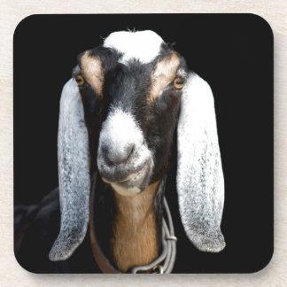 We've got Your Goat Coaster