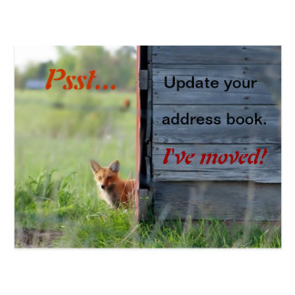 We've Moved Postcard (red fox in barn)