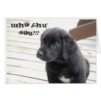wha' chu' say?!? card