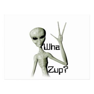 Wha Zup Postcard