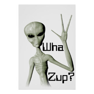 Wha Zup? poster