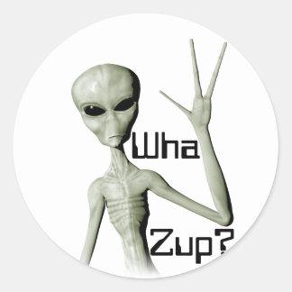 Wha Zup? Round Sticker
