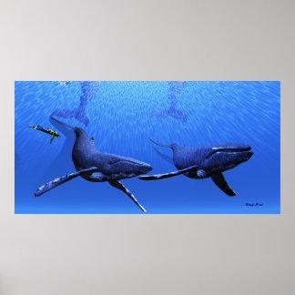 Whale 01 Print