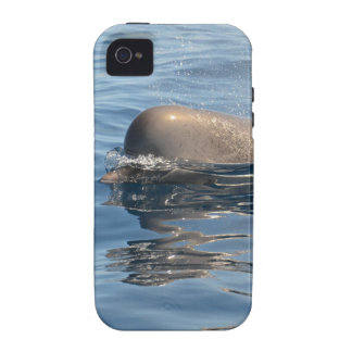 Whale and Reflection iPhone 4 Cover