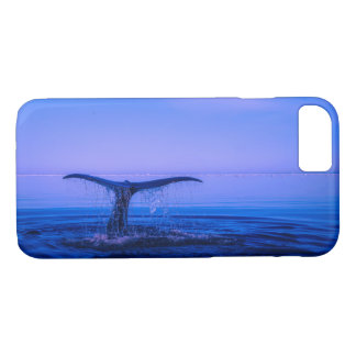 Whale iPhone 8/7 Case
