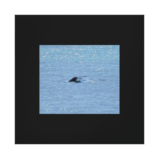 WHALE QUEENSLAND AUSTRALIA CANVAS PRINT