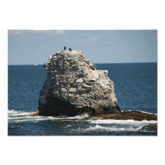 Whale Rock Photo Art