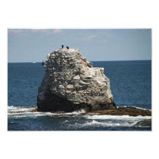 Whale Rock Photo Print