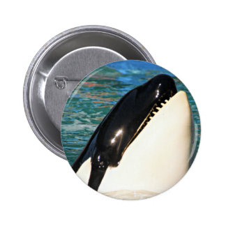 Whale Saying Hello 2 Inch Round Button
