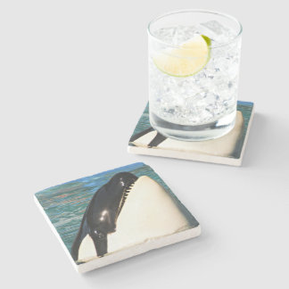 Whale Saying Hello Stone Coaster