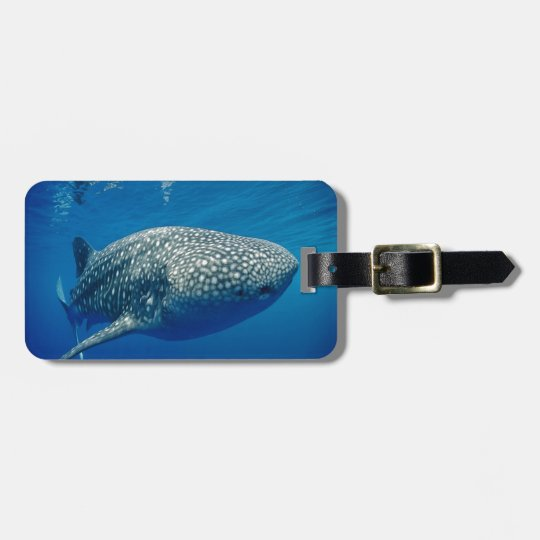 Whale Shark Bag Tag