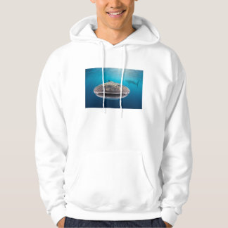 Whale Shark, Front view, Indonesia Hoodie