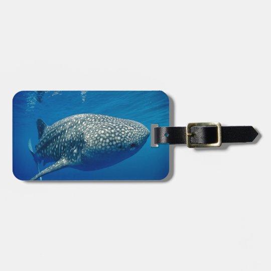 Whale Shark Luggage Tag