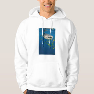 Whale Shark with fish, Indonesia Hoodie