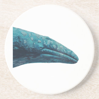 Whale Song Coaster