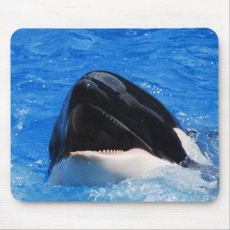 Whale Sounds Mouse Pad