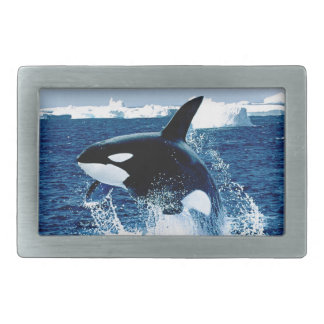 Whale Splash Belt Buckles
