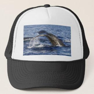 Whale Tail Trucker Hat