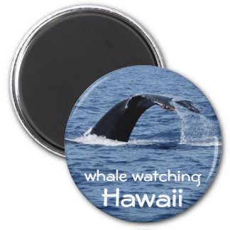 Whale Watching, Hawaii Magnet