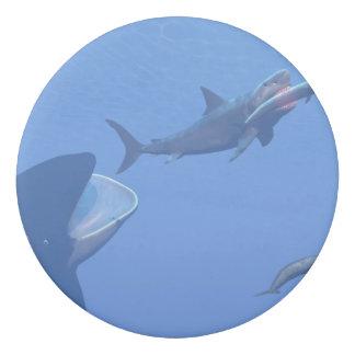 Whales and megalodon underwater - 3D render Eraser