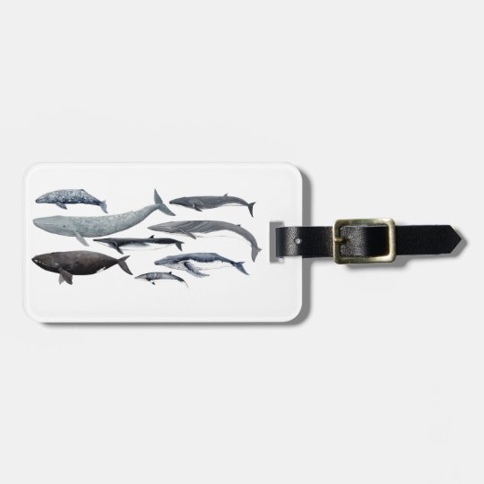 Whales and right whales bag tag
