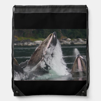 whales backpacks