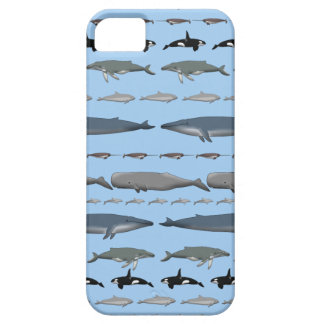 Whales Case For The iPhone 5