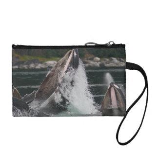 whales change purses