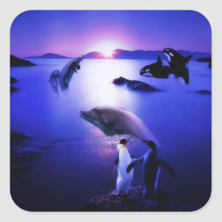 Whales dolphins penguins ocean sunset square sticker