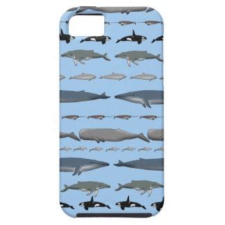 Whales iPhone 5 Cover
