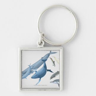 Whales Silver-Colored Square Keychain