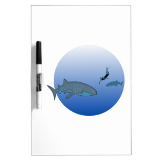 Whalesharks and a Free Diver Dry Erase Boards