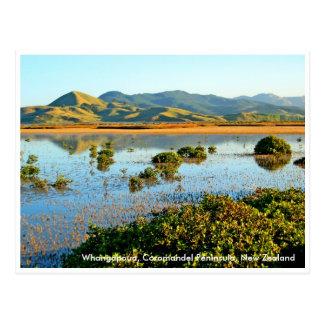 Whangapoua, Coromandel Peninsula, Ne... Postcard