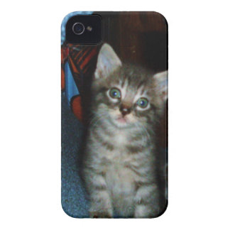 WHAT A CUTIE KITTY case