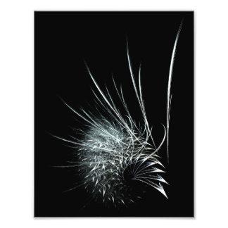 """What a tangled web we weave"" Photo Print"