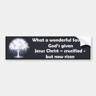 What a Wonderful Savior Bumper Sticker