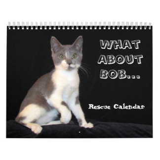 What About Bob Kitten Calendar - Encore Edition