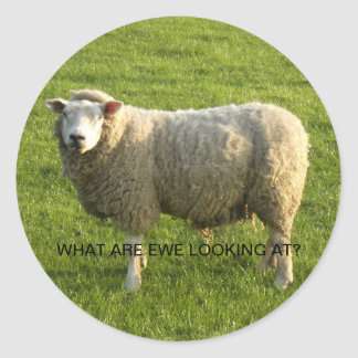 What are ewe looking at? classic round sticker