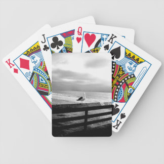 What are you looking at? bicycle playing cards