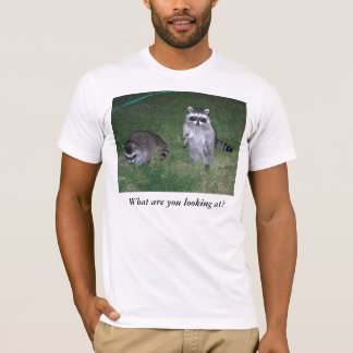 What are you looking at?  Raccoon T-shirt