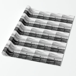 What are you looking at? wrapping paper