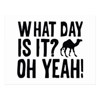 What Day Is It? Oh Yeah! Hump Day! Postcard