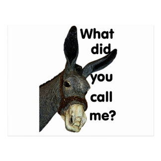 What did you call me? postcard
